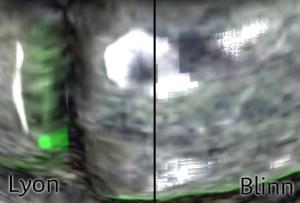 lyonblinn